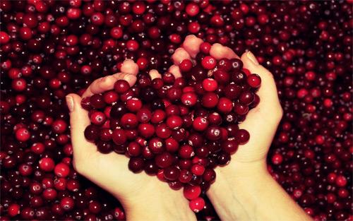 Nếu bạn thấy yêu hãy share like comment trái tim nam việt quất này nhé nhé. Give me your hands