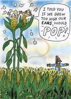 #Popcorn #Humor #Corn