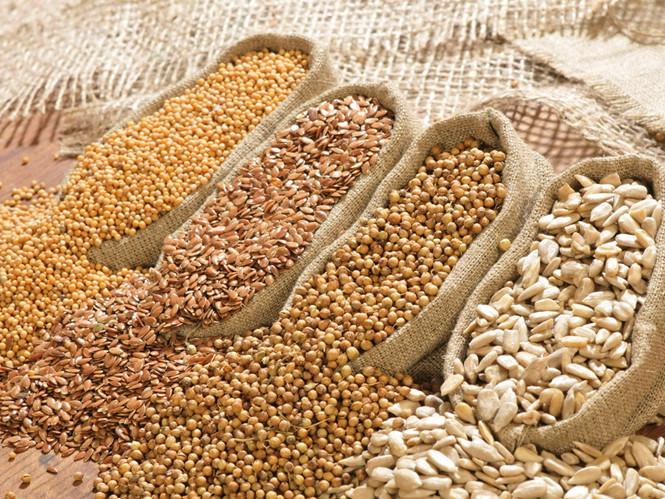 1001 ứng dụng và lợi ích của đậu nành trong cuộc sống khiến bạn bất ngờ -hình 1