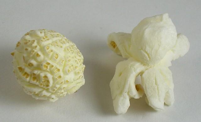 Ngô nấm là gì? Nhà cung cấp ngô nấm làm bắp rang bơ-hình 1